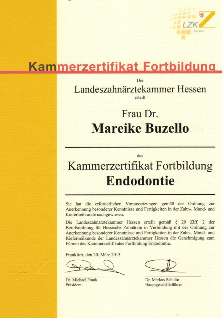 Zahnarzt Oberursel Dr Mareike Buzello Zahnärztin Endodontie 2013