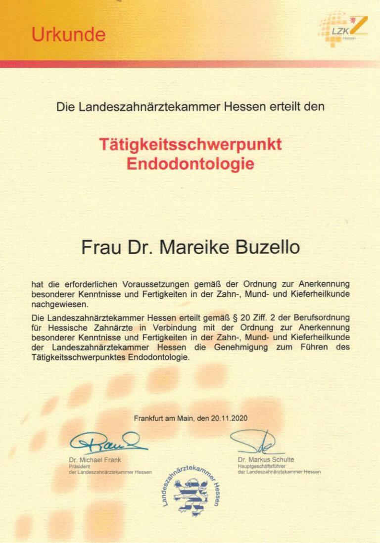 Zahnarzt Oberursel Dr Mareike Buzello Zahnärztin Endodontologie 2020